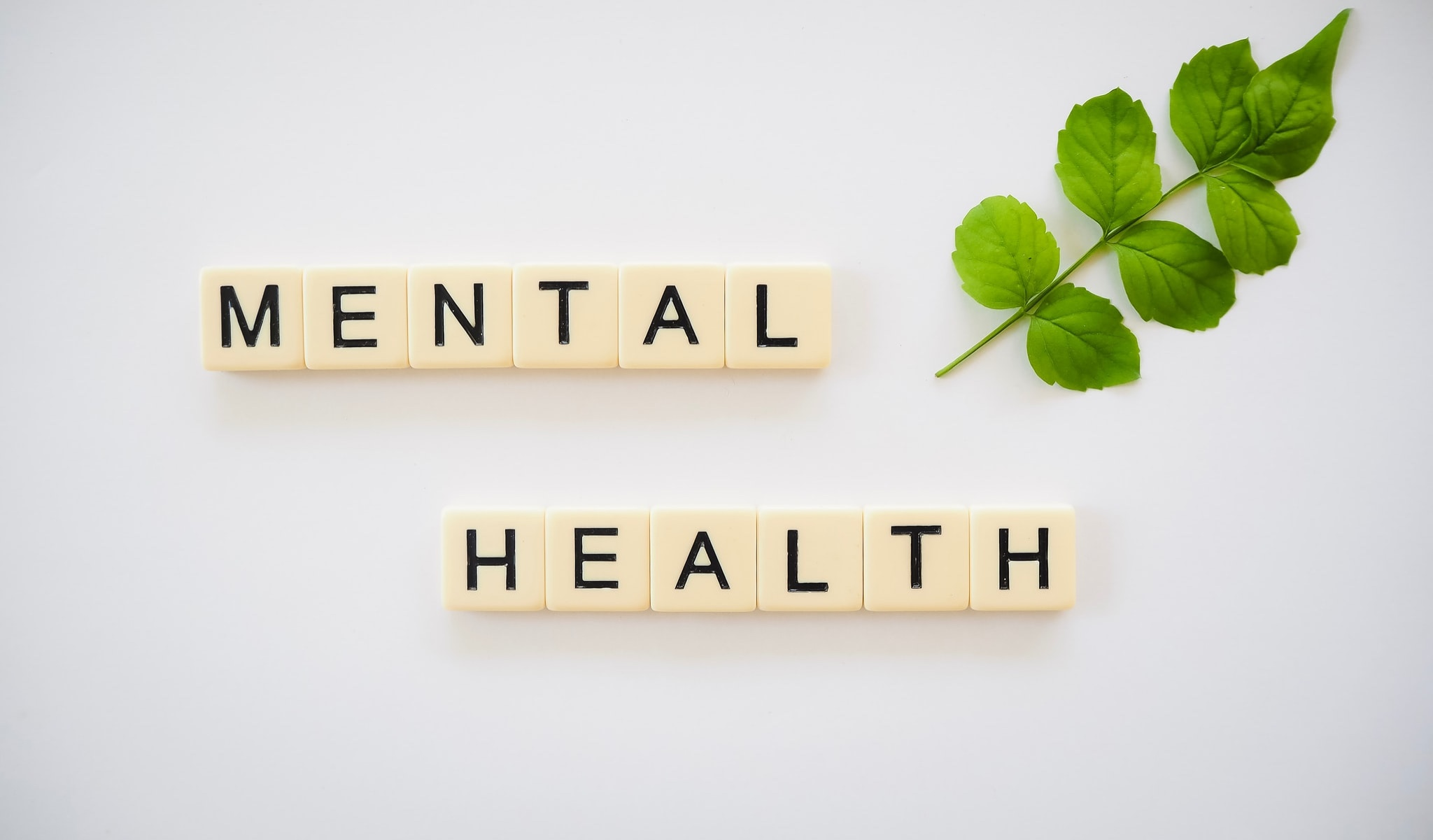 Mental Health written in san serif font on a scrabble pieces. There is a small branch with green leaves in the top right corner.